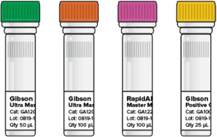RapidAMP™ kits<br/><small>High-yield transfection-ready DNA</small>